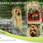 Galicien-NEW-GRANDCHAMPION-OF-SLOVAKIA-150x150 Exposiciones