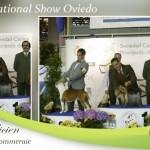 National-Show-Oviedo-150x150 Exposiciones