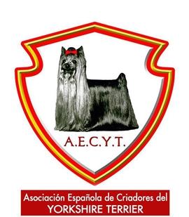 Asociación Española de Criadores de Yorkshire Terrier A.E.C.Y.T.