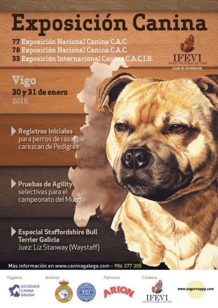 Exposición-Nac-Int-Canina-Vigo-2016 Exposición Nacional-Internacional de Vigo 2016 CAC-CACIB