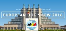 European Dog Show 2016