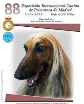Exposición Internacional Canina de Primavera de Madrid 2016
