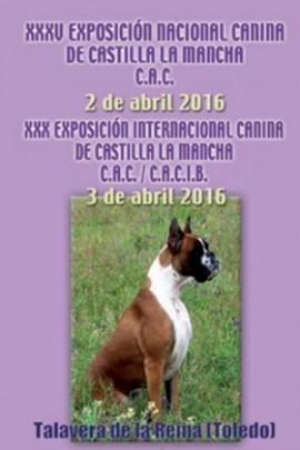 Exposición Nac Int Canina Talavera 2016