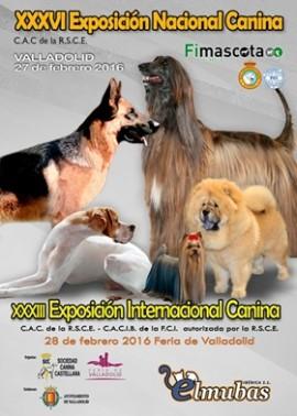 Exposiciones Nac Inter Canina Valladolid 2016
